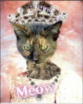 File:Princess Tiger Meowsalot.jpg