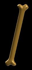 File:Golden Bone.png