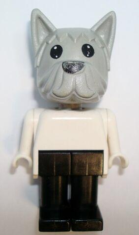 File:Doctor Dog.jpg