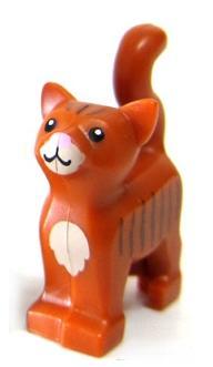 File:2014 cat.jpg