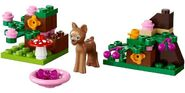 41023 Fawn's Forest alt1