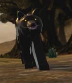 WOLFLOTR