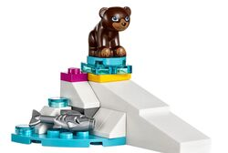 41324BiscuitTheBearCub