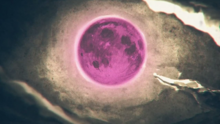 Hundred Year Moon 2
