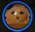 Squirrelbuster token