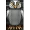 White Shoulder Owl