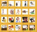 Thumbnail for version as of 14:37, October 7, 2013
