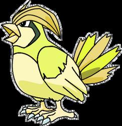 017 Pidgeotto OS1 Shiny