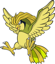 017 Pidgeotto DW Shiny