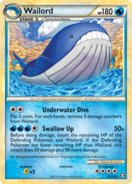 321 Wailord T31