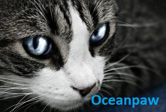 File:Oceanpaw.png