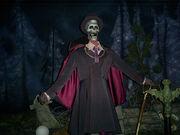 Phantom manor phantom