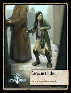 Caravan Urchin