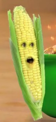 File:Corn Cob.jpg
