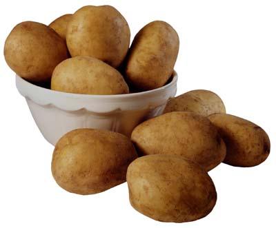 File:Potatoes-1.jpg