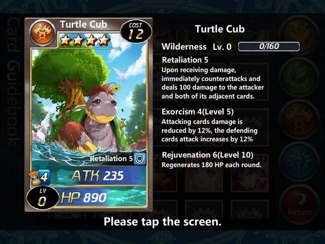 File:Turtle Cub 0.jpg