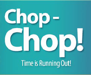 File:Chop Chop Event Picture.png