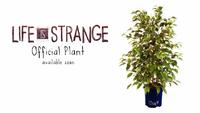 Lisa the Plant Merchandise