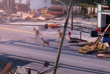 Deer sacrifice arcadia