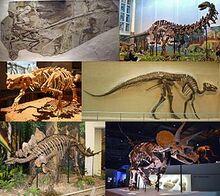 285px-Dinosauria montage 2
