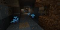Special Mushrooms (Wild Caves 3)