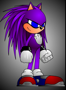 Sabir the hedgehog