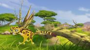 Ono-the-tickbird (11)