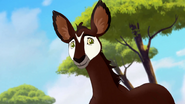 The-imaginary-okapi (410)