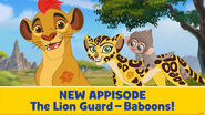 Baboons-appisode
