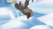 The-lost-gorillas (423)