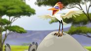 Ono-the-tickbird (163)