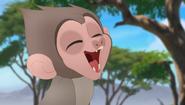 Baboons (123)