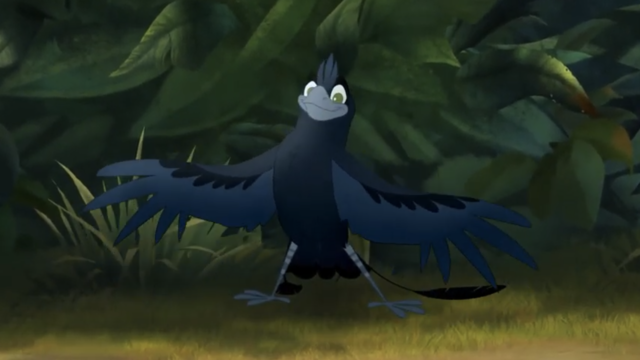 File:The-call-of-the-drongo (201).png