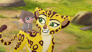 Baboons (364)