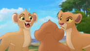 Baboons (276)
