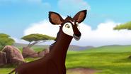 The-imaginary-okapi (54)