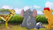 Follow-that-hippo (149)