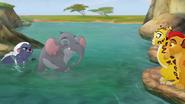 Follow-that-hippo (88)