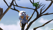 The-trouble-with-galagos (90)