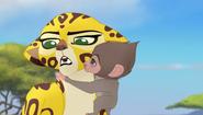 Baboons (110)