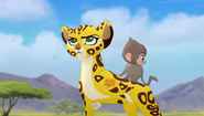 Baboons (144)