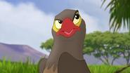 Ono-the-tickbird (332)