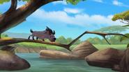 Follow-that-hippo (328)