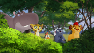 The-trouble-with-galagos (202)