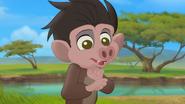 Follow-that-hippo (314)