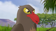 Ono-the-tickbird (327)
