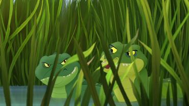 Male-croc-nose