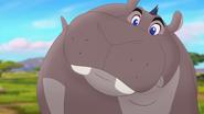 Follow-that-hippo (283)
