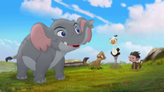 Follow-that-hippo (226)