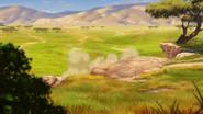 The-savannah-summit (16)
